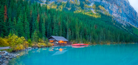 фауна Канади